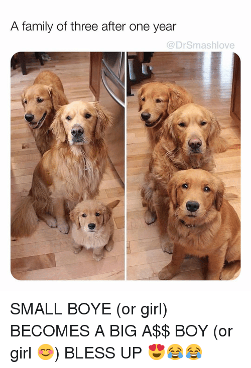 Boy Or Girl: A family of three after one year  @DrSmashlove SMALL BOYE (or girl) BECOMES A BIG A$$ BOY (or girl 😊) BLESS UP 😍😂😂