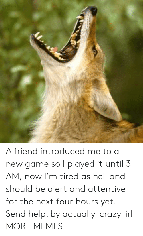 Crazy, Dank, and Memes: A friend introduced me to a new game so I played it until 3 AM, now I'm tired as hell and should be alert and attentive for the next four hours yet. Send help. by actually_crazy_irl MORE MEMES