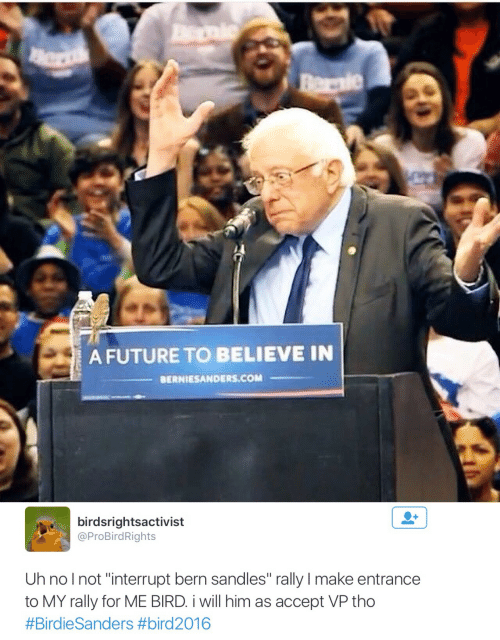 "Bern: A FUTURE TO BELIEVE IN  BERNIESANDERS.COM   birdsrightsactivist  @ProBirdRights  Uh nolnot ""interrupt bern sandles"" rally I make entrance  to MY rally for ME BIRD i will him as accept VP tho"