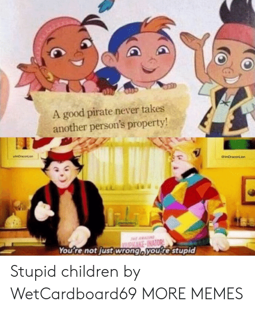 Pirate: A good pirate never takes  another person's property  uimDraconLion  @ImDraconLion  You re not just wrong voure stupid Stupid children by WetCardboard69 MORE MEMES