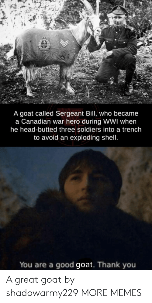GOAT: A great goat by shadowarmy229 MORE MEMES
