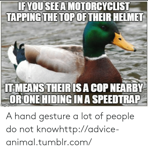 Hand Gesture: A hand gesture a lot of people do not knowhttp://advice-animal.tumblr.com/