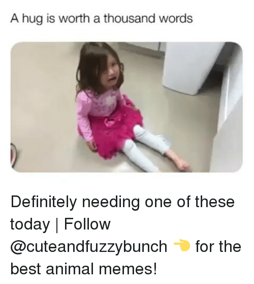 Best Animal Memes: A hug is worth a thousand words Definitely needing one of these today | Follow @cuteandfuzzybunch 👈 for the best animal memes!