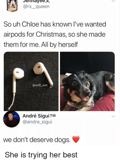 Christmas, Dogs, and Memes: A]İ  Jennayeex  @rx.-queen  So uh Chloe has known l've wanted  airpods for Christmas, so she made  them for me. All by herself  @will ent  André Sigui TM  @andre_sigui  we don't deserve dogs She is trying her best