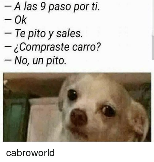 Sales,  No, and  Las: A las 9 paso por ti.  Ok  Te pito y sales.  ¿Compraste carro?  No, un pito. cabroworld