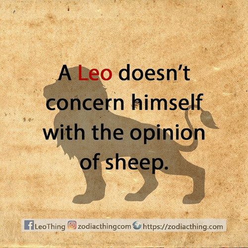 Com, Leo, and Sheep: A Leo doesn't  concern himself  with the opinion  of sheep.  fLeoThing zodiacthingcom https://zodiacthing.com