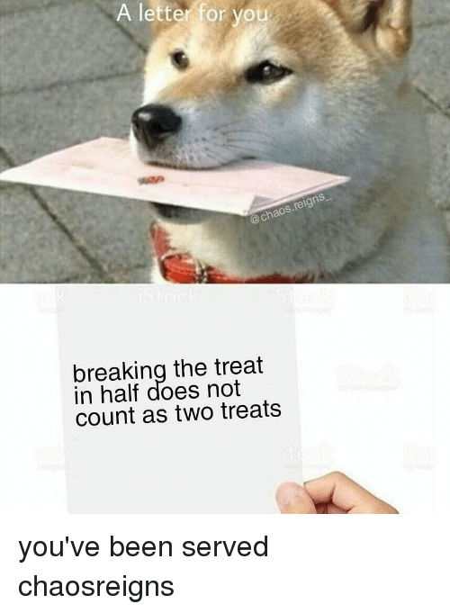 chaos reigns: A letter for you  @chaos.reigns  breaking the treat  in half does not  count as two treats you've been served chaosreigns