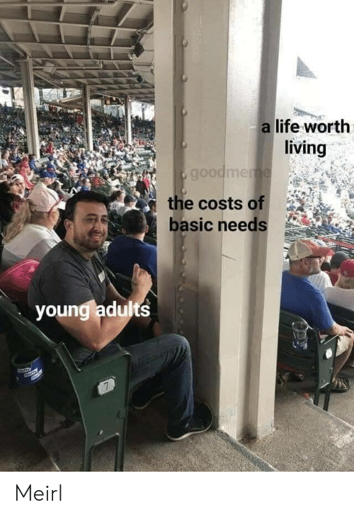 Life, Living, and MeIRL: a life worth  living  goodmeme  the costs of  basic needs  youngladults  7 Meirl