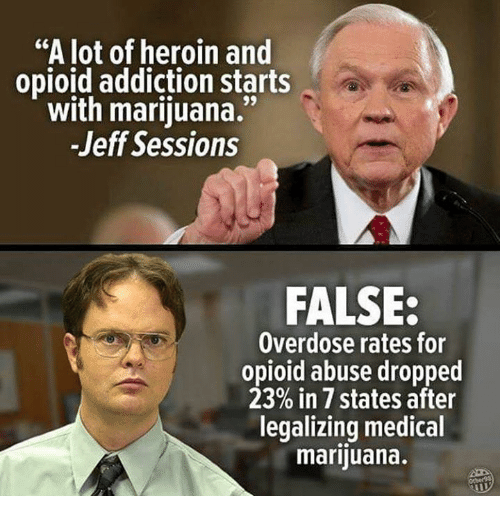 "Overdose: ""A lot of heroin and  opioid addiction starts  with marijuana.""  -Jeff Sessions  FALSE:  Overdose rates for  opioid abuse dropped  23% in 7 states after  legalizing medical  marijuana."