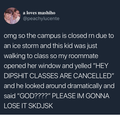 """God, Omg, and Roommate: a loves mashiho  @peachylucente  omg so the campus is closed rn due to  an ice storm and this kid was just  walking to class so my roommate  opened her window and yelled """"HEY  DIPSHIT CLASSES ARE CANCELLED""""  and he looked around dramatically and  said """"GOD????"""" PLEASE IM GONNA  LOSE IT SKDJSK"""