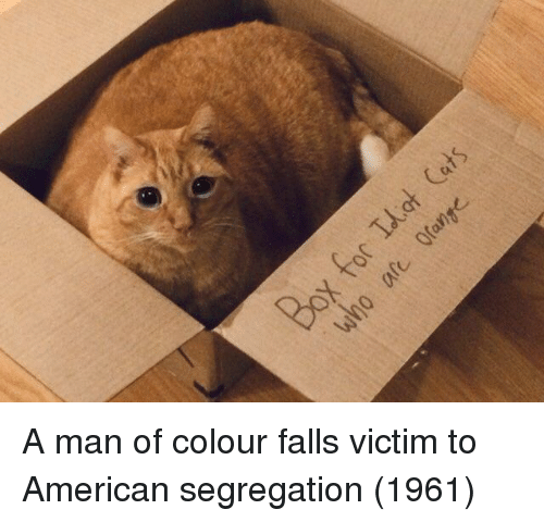 American, Man, and Segregation: A man of colour falls victim to American segregation (1961)