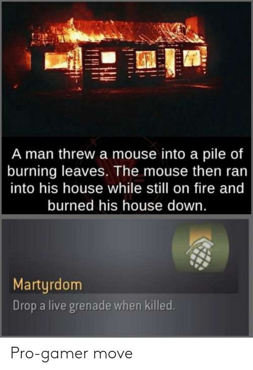 burning: A man threw a mouse into a pile of  burning leaves. The mouse then ran  into his house while still on fire and  burned his house down.  Martyrdom  Drop a live grenade when killed. Pro-gamer move