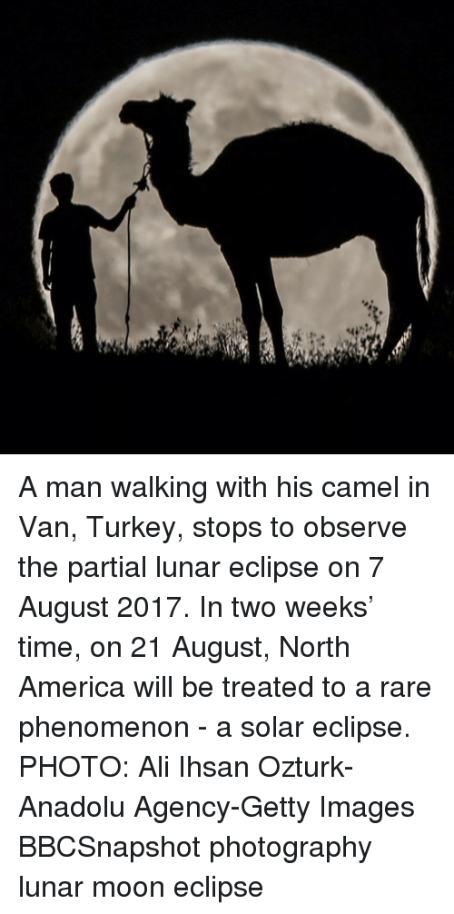 Vanned: A man walking with his camel in Van, Turkey, stops to observe the partial lunar eclipse on 7 August 2017. In two weeks' time, on 21 August, North America will be treated to a rare phenomenon - a solar eclipse. PHOTO: Ali Ihsan Ozturk-Anadolu Agency-Getty Images BBCSnapshot photography lunar moon eclipse
