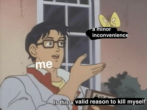 Minor Inconvenience: a minor  inconvenience  me  Is this a valid reason to kill myself