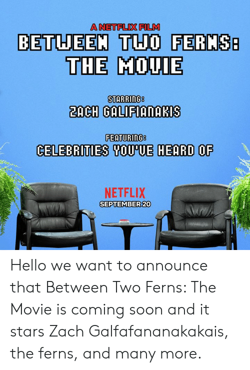 coming soon: A NETFLIX FILM  BETUEEM THO FERMS  THE MOUIE  2ACH GALIFIANAKIS  FEATURING8  CELEBRITIES SOU'UE HEARD OF  NETFLIX  SEPTEMBER 20 Hello we want to announce that Between Two Ferns: The Movie is coming soon and it stars Zach Galfafananakakais, the ferns, and many more.
