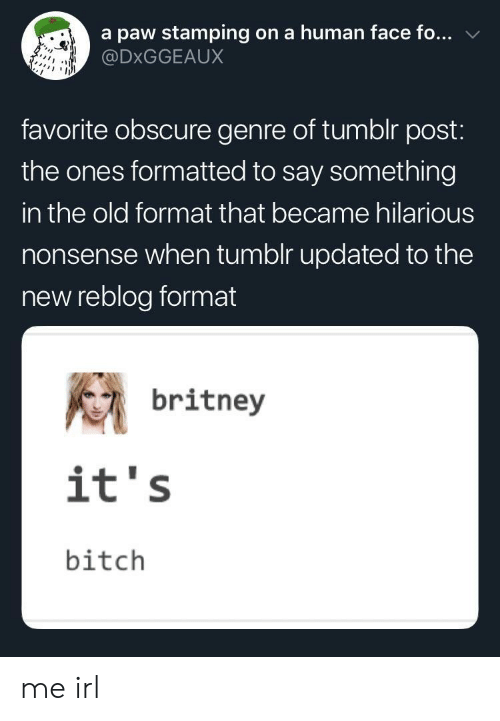 obscure: a paw stamping on a human face fo...  @DxGGEAUX  favorite obscure genre of tumblr post:  the ones formatted to say something  in the old format that became hilarious  nonsense when tumolr updated to the  new reblog format  britney  it's  bitch me irl