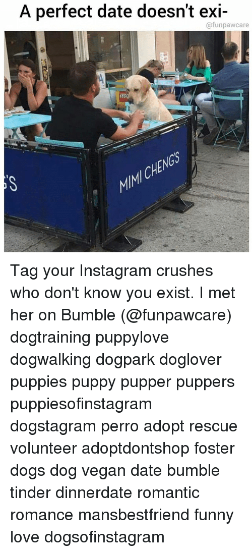 Dogs, Funny, and Instagram: A perfect date doesnt exi-  @funpawcare  LEG  CHE Tag your Instagram crushes who don't know you exist. I met her on Bumble (@funpawcare) dogtraining puppylove dogwalking dogpark doglover puppies puppy pupper puppers puppiesofinstagram dogstagram perro adopt rescue volunteer adoptdontshop foster dogs dog vegan date bumble tinder dinnerdate romantic romance mansbestfriend funny love dogsofinstagram