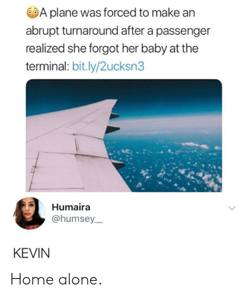 Being Alone, Dank, and Home Alone: A plane was forced to make an  abrupt turnaround after a passenger  realized she forgot her baby at the  terminal: bit.ly/2ucksn3  Humaira  @humsey  KEVIN Home alone.