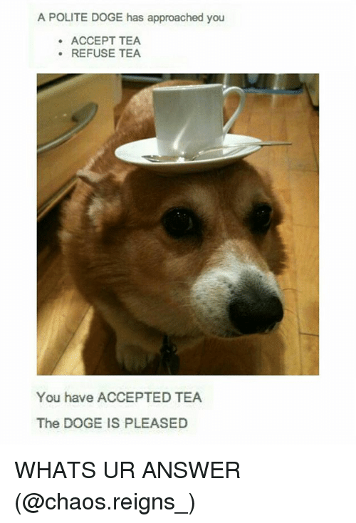 Dogee: A POLITE DOGE has approached you  ACCEPT TEA  .REFUSE TEA  You have ACCEPTED TEA  The DOGE IS PLEASED WHATS UR ANSWER (@chaos.reigns_)