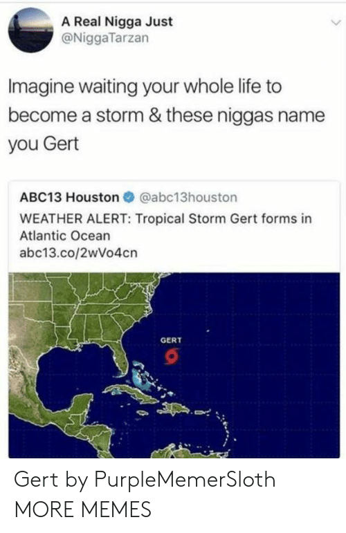 Atlantic: A Real Nigga Just  @NiggaTarzan  Imagine waiting your whole life to  become a storm & these niggas name  you Gert  ABC13 Houston @abc13houston  WEATHER ALERT: Tropical Storm Gert forms in  Atlantic Ocean  abc13.co/2wVo4cn  GERT Gert by PurpleMemerSloth MORE MEMES