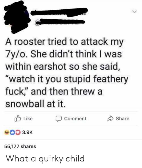 "Fuck, Watch, and Thathappened: A rooster tried to attack my  7y/o. She didn't think I was  within earshot so she said,  ""watch it you stupid feathery  fuck,"" and then threw  snowball at it.  Like  Comment  Share  3.9K  55,177 shares What a quirky child"