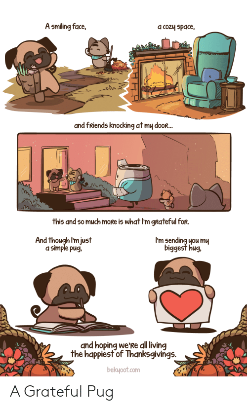smiling: A smiling face,  a cozy space,  and fRiends knocking at my dooR...  this and so much moRe is what I'm gRateful for.  I'm sending you mu  biggest hug.  And though I'm just  a simple pug,  and hoping we'Re all living  the happiest of Thanksgivings.  bekyoot.com A Grateful Pug