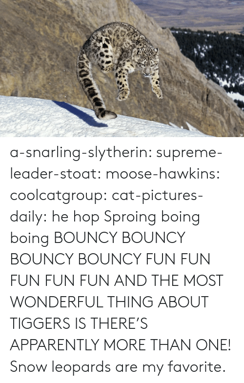 boing: a-snarling-slytherin:  supreme-leader-stoat:  moose-hawkins:  coolcatgroup:  cat-pictures-daily: he hop  Sproing boing boing    BOUNCY BOUNCY BOUNCY BOUNCY FUN FUN FUN FUN FUN  AND THE MOST WONDERFUL THING ABOUT TIGGERS IS THERE'S APPARENTLY MORE THAN ONE!   Snow leopards are my favorite.