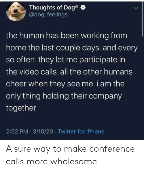 Conference: A sure way to make conference calls more wholesome