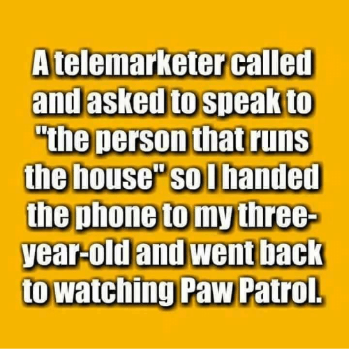 """PAW Patrol: A telemarketer called  and asked to speak to  """"the person that runs  the house Solhanded  the phone to my three  year-old and went back  to watching Paw Patrol"""