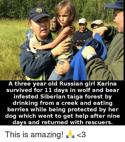 Drinking, Memes, and Bear: A three year old Russian girl Karina  survived for 11 days in wolf and bear  infested Siberian taiga forest by  drinking from a creek and eating  berries while being protected by her  dog which went to get help after nine  days and returned with rescuers. This is amazing! 🙏 <3