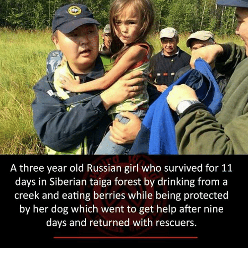 Memes, Russian, and 🤖: A three year old Russian girl who survived for 11  days in Siberian taiga forest by drinking from a  creek and eating berries while being protected  by her dog which went to get help after nine  days and returned with rescuers.