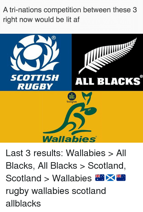 Memes Instagram: A tri-nations competition between these 3  right now would be lit af  (R  SCOTTISH ALL BLACKS  RUGBY  RUGBY  MEMES  Instagram  Wallabies Last 3 results: Wallabies > All Blacks, All Blacks > Scotland, Scotland > Wallabies 🇦🇺🏴🇳🇿 rugby wallabies scotland allblacks
