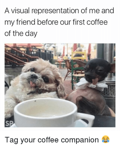 visualizer: A visual representation of me and  my friend before our first coffee  of the day Tag your coffee companion 😂