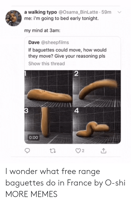 Reasoning: a walking typo @Osama_BinLatte 59m  me: i'm going to bed early tonight.  my mind at 3am:  Dave @sheepfilms  If baguettes could move, how would  they move? Give your reasoning pls  Show this thread  2  4  0:00  O2 I wonder what free range baguettes do in France by O-shi MORE MEMES