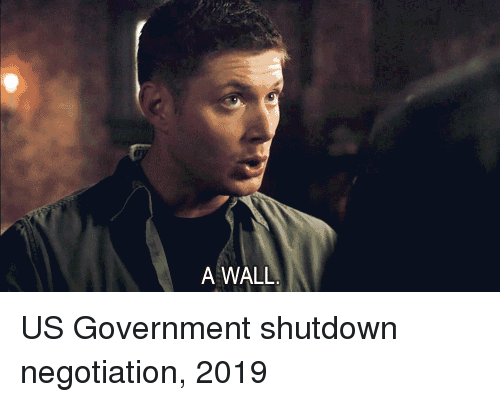 Government, Us Government, and Government Shutdown: A WALL US Government shutdown negotiation, 2019