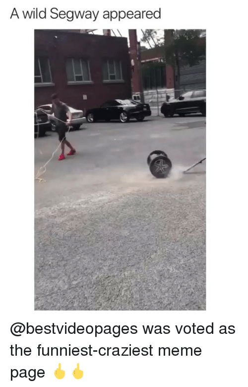 Meme, Memes, and Segway: A wild Segway appeared @bestvideopages was voted as the funniest-craziest meme page 🖕🖕