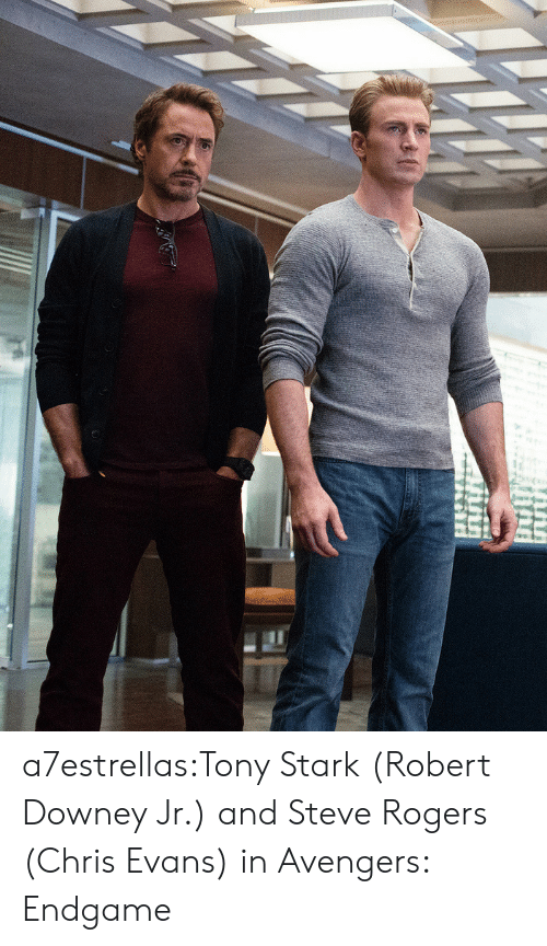 Chris Evans, Robert Downey Jr., and Target: a7estrellas:Tony Stark (Robert Downey Jr.) and Steve Rogers (Chris Evans) in Avengers: Endgame