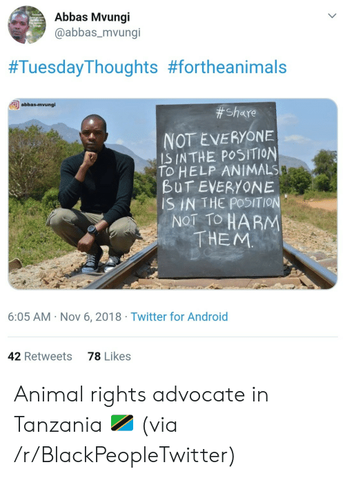 Advocate: Abbas Mvungi  @abbas_mvungi  #TuesdayThoughts #fortheanimals  abbas-mvungi  # Share  NOT EVERYONE  IS INTHE POSITION  TO HELP ANIMALS  BUT EVERYONE  SIN THE POSITION  NOT TO HARM  THEM  6:05 AM Nov 6, 2018 Twitter for Android  78 Likes  42 Retweets Animal rights advocate in Tanzania 🇹🇿 (via /r/BlackPeopleTwitter)