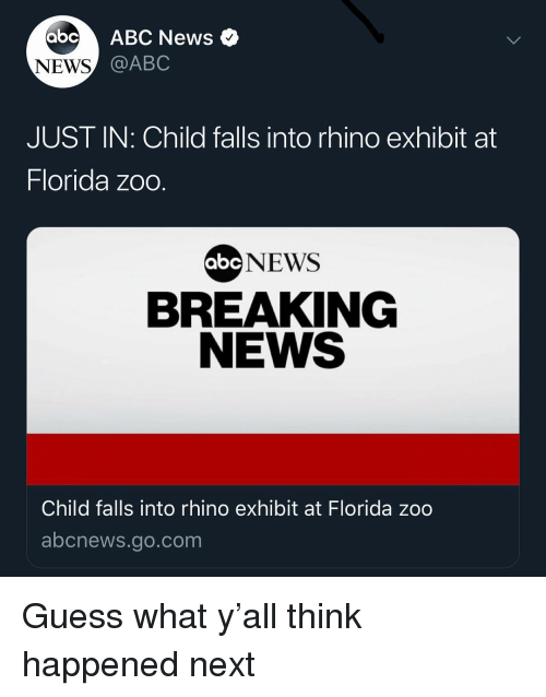 Exhibit: abc ABC News  NEWS  @ABC  JUST IN: Child falls into rhino exhibit at  Florida zoo  NEWS  BREAKING  NEWS  abc  Child falls into rhino exhibit at Florida zoo  abcnews.go.com Guess what y'all think happened next