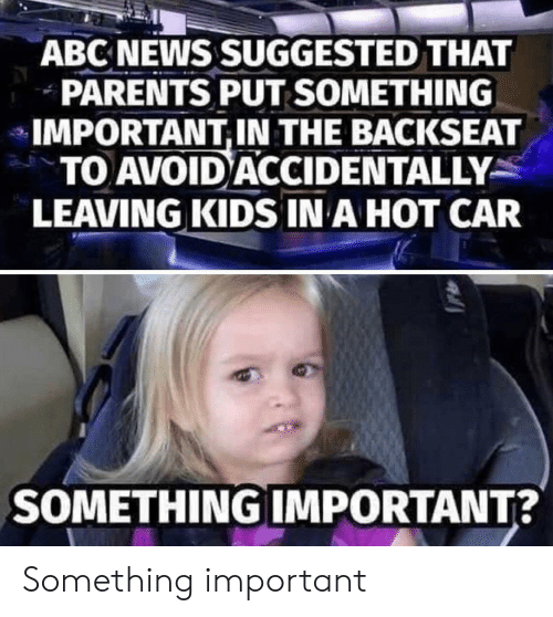 Backseat: ABC NEWS SUGGESTED THAT  PARENTS PUT SOMETHING  IMPORTANT,IN THE BACKSEAT  TO AVOID ACCIDENTALLY  LEAVING KIDS IN A HOT CAR  SOMETHING IMPORTANT? Something important