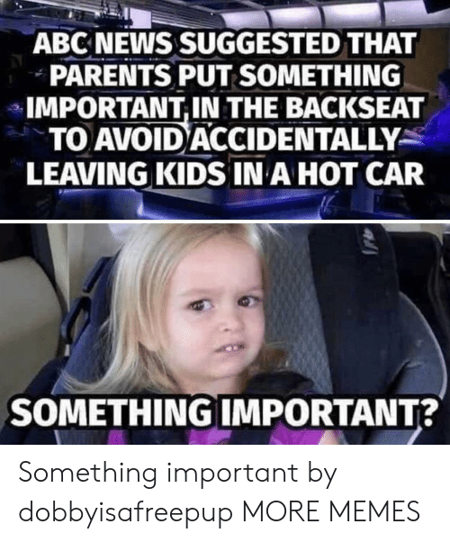 Backseat: ABC NEWS SUGGESTED THAT  PARENTS PUT SOMETHING  IMPORTANT,IN THE BACKSEAT  TO AVOID ACCIDENTALLY  LEAVING KIDS IN A HOT CAR  SOMETHING IMPORTANT? Something important by dobbyisafreepup MORE MEMES