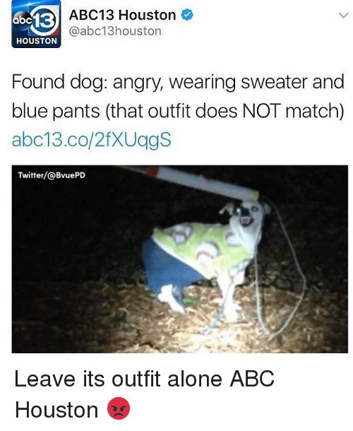 Abc, Being Alone, and Memes: abc13  ABC13 Houston C  @abc13houston  HOUSTON  Found dog: angry, wearing sweater and  blue pants (that outfit does NOT match)  abc13 co/2fXUggS  Twitter/@BvuePD Leave its outfit alone ABC Houston 😡