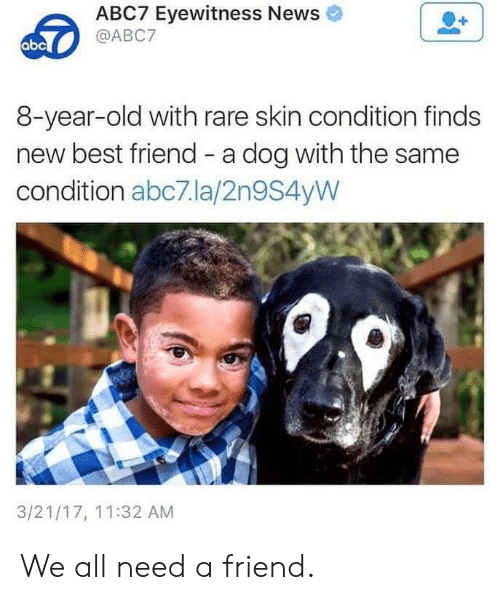 Abc7: ABC7 Eyewitness News  @ABC7  abc  8-year-old with rare skin condition finds  new best friend - a dog with the same  condition abc7.la/2n9S4yW  3/21/17, 11:32 AM We all need a friend.