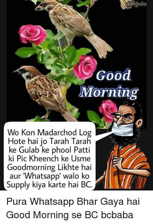 Memes, Whatsapp, and Good Morning: abebabu  Good  Morning  Wo Kon Madarchod Log  Hote hai jo Tarah Tarah  ke Gulab ke phool Patti  ki Pic Kheench ke Usme  Goodmorning Likhte hai  aur 'Whatsapp' walo ko  Supply kiya karte hai BC. Pura Whatsapp Bhar Gaya hai Good Morning se BC bcbaba