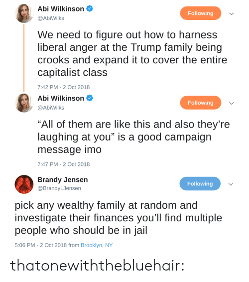 """jensen: Abi Wilkinson  @AbiWilks  Following  We need to figure out how to harness  liberal anger at the Trump family being  crooks and expand it to cover the entire  capitalist class  7:42 PM-2 Oct 2018   Abi Wilkinson  Following  @AbiWilks  """"All of them are like this and also they're  laughing at you"""" is a good campaign  message imo  7:47 PM-2 Oct 2018   Brandy Jensen  @BrandyLJensen  Following  pick any wealthy family at random and  investigate their finances you'll find multiple  people who should be in jail  5:06 PM - 2 Oct 2018 from Brooklyn, NY thatonewiththebluehair:"""