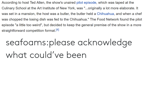 "Food Network: According to host Ted Allen, the show's unaired pilot episode, which was taped at the  Culinary School at e Ari Insic of Now York, .originally a lot more elaborat l  was set in a mansion, the host was a butler, the butler held a Chihuahua, and when a chef  was chopped the losing dish was fed to the Chihuahua."" The Food Network found the pilot  episode ""a little too weird"", but decided to keep the general premise of the show in a more  straightforward competition format.4 seafoams:please acknowledge what could've been"