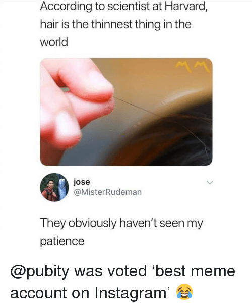 Instagram, Meme, and Memes: According to scientist at Harvard  hair is the thinnest thing in the  world  jose  @MisterRudeman  They obviously haven't seen my  patience @pubity was voted 'best meme account on Instagram' 😂