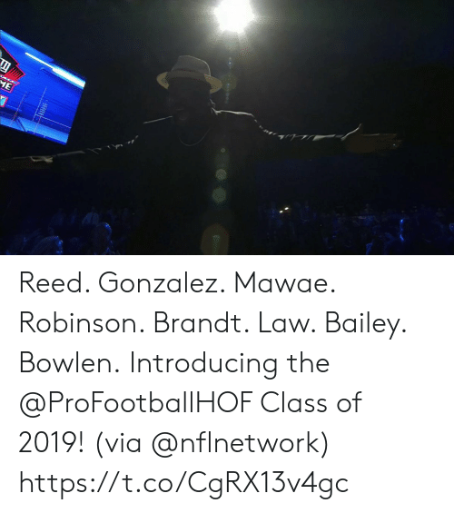 Memes, 🤖, and Ace: ACE  ME Reed. Gonzalez. Mawae. Robinson. Brandt. Law. Bailey. Bowlen.  Introducing the @ProFootballHOF Class of 2019! (via @nflnetwork) https://t.co/CgRX13v4gc