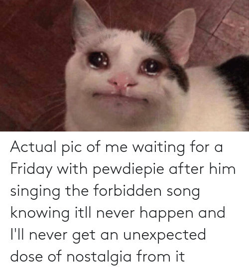 Singing: Actual pic of me waiting for a Friday with pewdiepie after him singing the forbidden song knowing itll never happen and I'll never get an unexpected dose of nostalgia from it