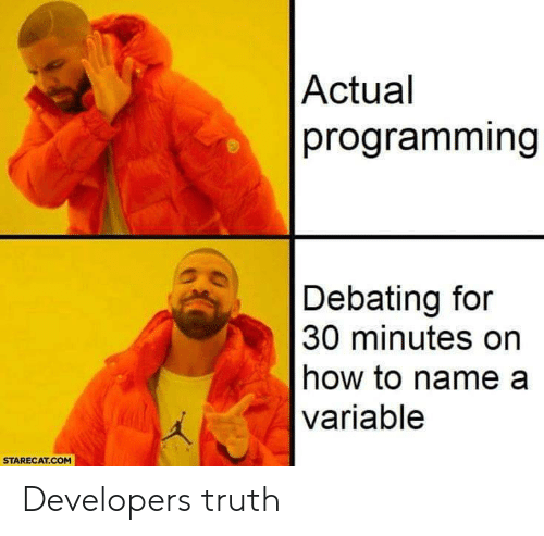 How To, Programming, and Truth: Actual  programming  Debating for  30 minutes on  how to name a  variable  STARECAT.COM Developers truth